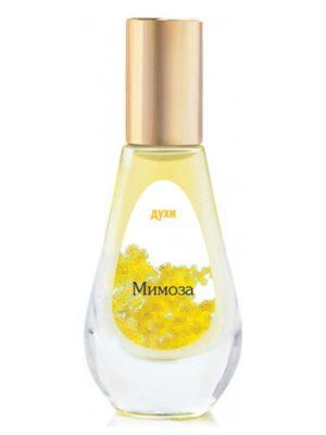 Мимоза Dilis Parfum женские