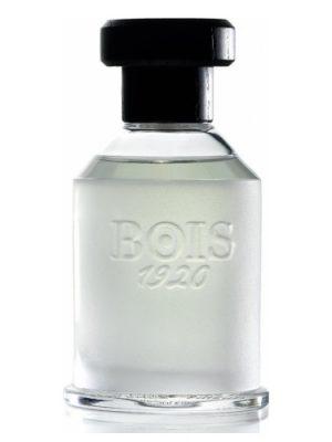 Ancora Amore Bois 1920 унисекс