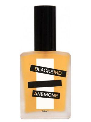 Anemone Blackbird унисекс