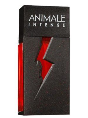 Animale Intense Animale женские