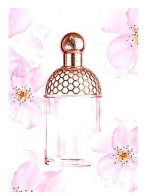 Aqua Allegoria Cherry Blossom Guerlain женские