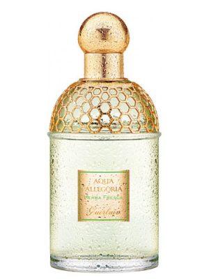 Aqua Allegoria Herba Fresca Guerlain унисекс