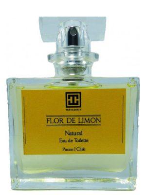 Flor de Limon Terragonia унисекс