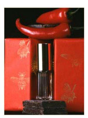 Piment et Chocolat DSH Perfumes женские